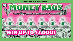 Money Bags image